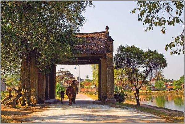 Khám phá làng cổ Đường Lâm bằng xe điện du lịch