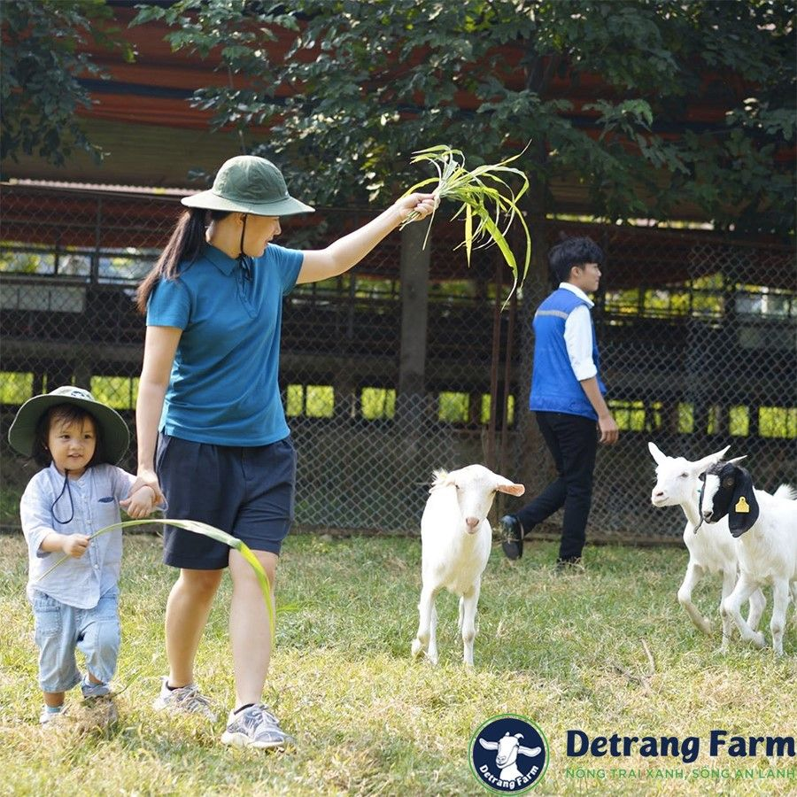 Nông trại Detrang Farm
